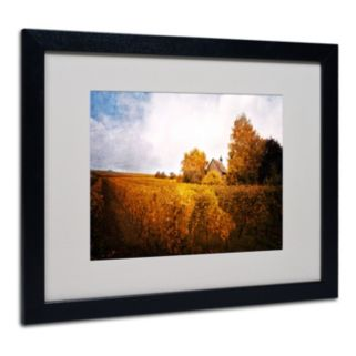 "Trademark Fine Art ""Light in Vineyards"" Black Framed Wall Art"
