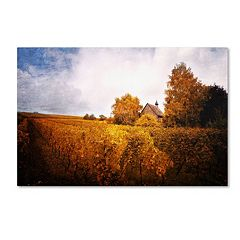 Trademark Fine Art 'Light in Vineyards' Canvas Wall Art