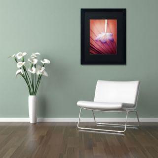 "Trademark Fine Art ""Access to Desires"" Black Framed Wall Art"