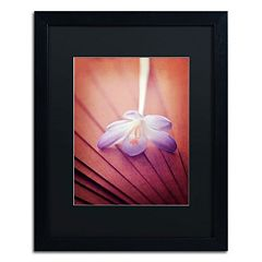 Trademark Fine Art 'Access to Desires' Black Framed Wall Art