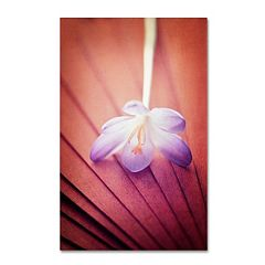 Trademark Fine Art 'Access to Desires' Canvas Wall Art