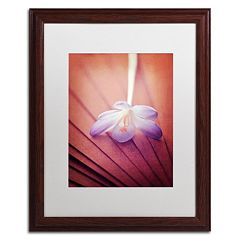 Trademark Fine Art 'Access to Desires' Wood Finish Framed Wall Art