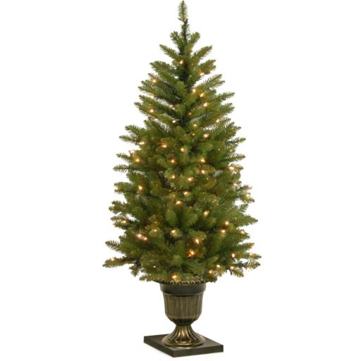 National Tree Company 4-ft. Pre-Lit Artificial Dunhill Fir Porch Tree