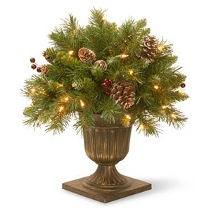 National Tree Company 18-in. Pre-Lit Artificial Pine & Berry Bush Plant