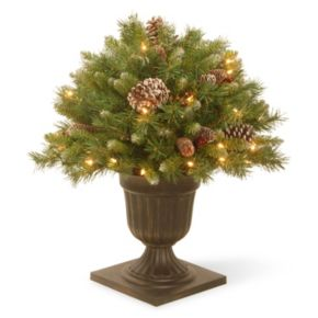 National Tree Company 24-in. Pre-Lit Frosted Artificial Pine Bush Plant
