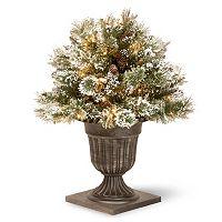 National Tree Company 24-in. Pre-Lit Artificial Pine Glitter Bush Plant