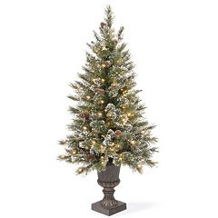 National Tree Company 4-ft. Clear Pre-Lit Artificial Pine Glitter Porch Tree