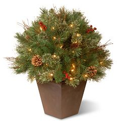 National Tree Company 24-in. Pre-Lit Artificial Pine Bush Plant