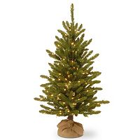 National Tree Company 4-ft. Pre-Lit Artificial Kensington Pine Burlap Porch Tree