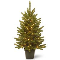 National Tree Company 4-ft. Pre-Lit Artificial Kensington Pine Porch Tree