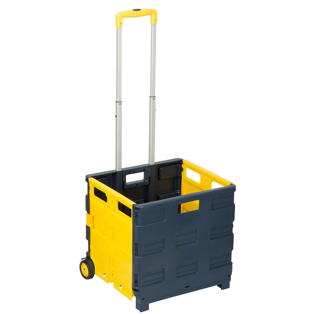 Honey-Can-Do Folding Carry-All Crate