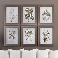 Variegated Plants Framed Wall Art 6-piece Set