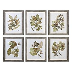 Uttermost Seedlings Leaves Framed Wall Art 6-piece Set