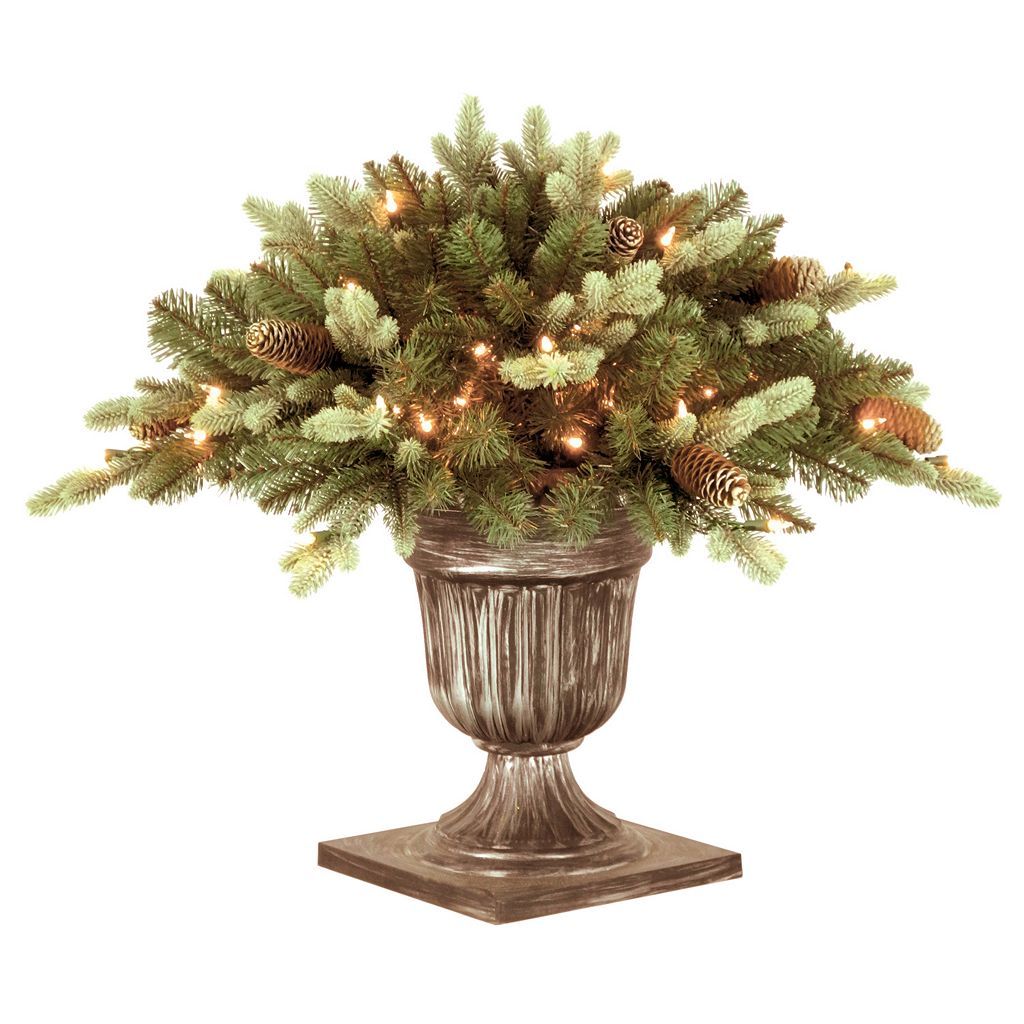 National Tree Company 24-in. Pre-Lit Artificial Copenhagen Blue Spruce Bush Plant