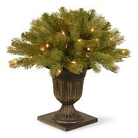 National Tree Company 18-in. Pre-Lit Artificial Downswept Douglas Fir Bush Plant
