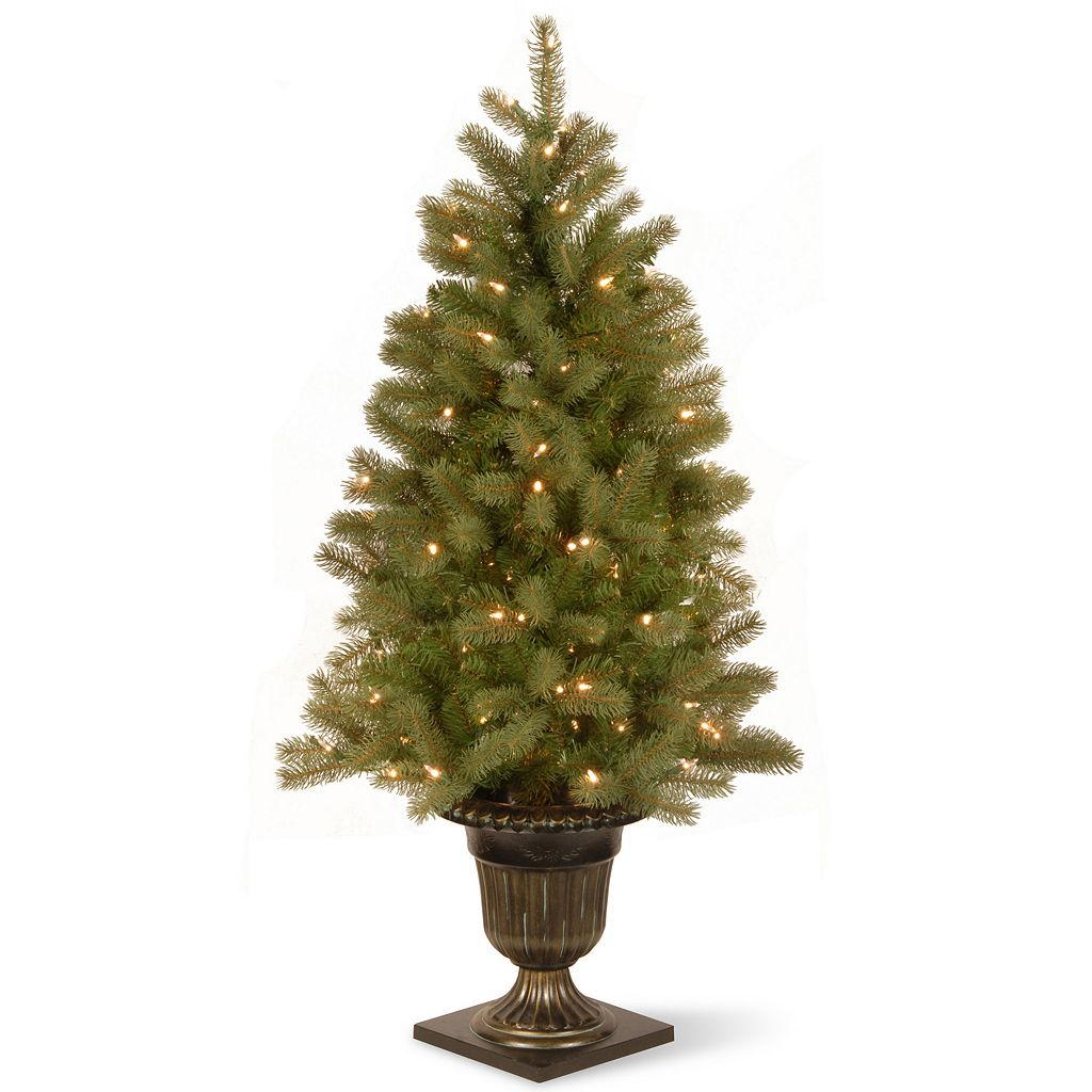National Tree Company 4-ft. Pre-Lit Artificial Downswept Douglas Fir Porch Tree