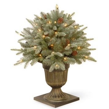National Tree Company 24-in. Pre-Lit Artificial Frosted Arctic Spruce Bush Plant
