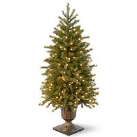 National Tree Company 4-ft. Pre-Lit Artificial Jersey Fraser Fir Porch Tree
