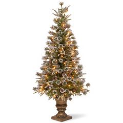 National Tree Company 4-ft. Pre-Lit Artificial Liberty Pine Porch Tree