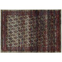 StyleHaven Alexander Distressed Border Panel Rug