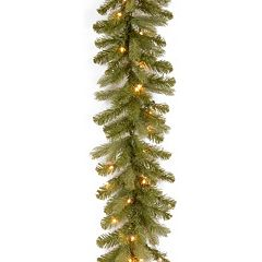 National Tree Company 9-ft. Douglas Fir Pre-Lit Artificial Garland