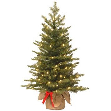 National Tree Company 3-ft. Pre-Lit Artificial Nordic Spruce Christmas Tree