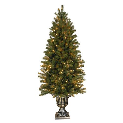 National Tree Company 6-ft. Douglas Fir Pre-Lit Artificial Entrance Tree