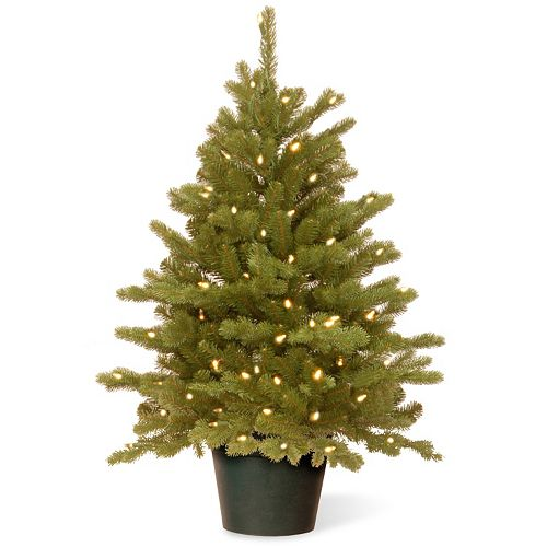 sneakers for cheap becfd d4d36 National Tree Company 3-ft. Hampton Spruce Pre-Lit Christmas Tree