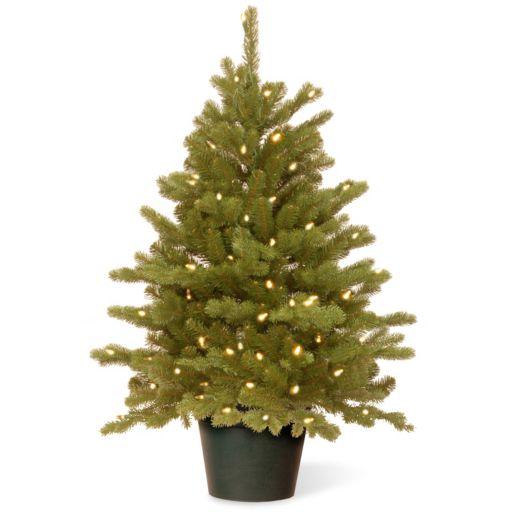 National Tree Company 3-ft. Hampton Spruce Pre-Lit Christmas Tree