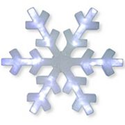 National Tree Company 42 in Pre-Lit White Snowflake Indoor / Outdoor Wall Decor