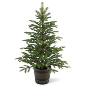 National Tree Company 4-ft. Pre-Lit Artificial Norwegian Spruce Porch Tree