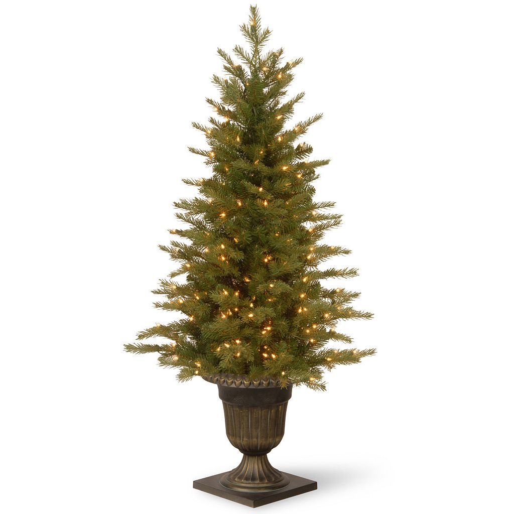 National Tree Company 4-ft. Pre-Lit Artificial Nordic Spruce Porch Tree