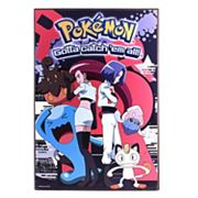Pokémon Gotta Catch 'em All Team Rocket Wood Wall Art