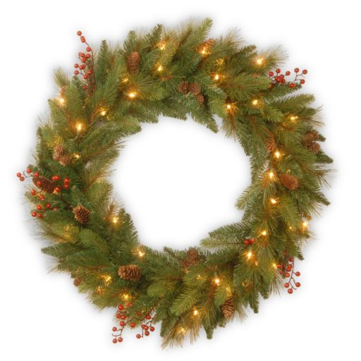 National Tree Company 24-in. Clear & Red Pre-Lit Artificial Christmas Wreath
