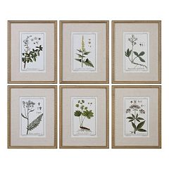 Uttermost Green Floral Botanical Study Framed Wall Art 6-piece Set