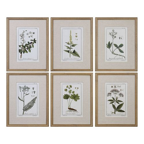Green Floral Botanical Study Framed Wall Art 6-piece Set