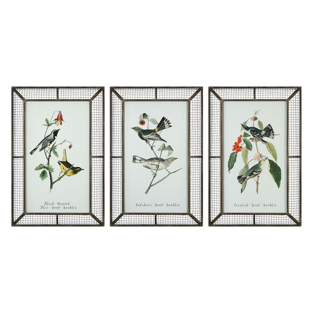 Warblers Bird Framed Wall Art 3-piece Set