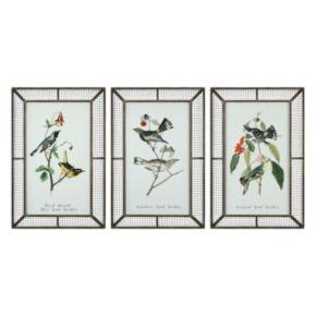 Warblers Bird Framed Wall Art 3-piece Set