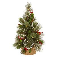 National Tree Company 18-in. Pre-Lit Artificial Wintry Pine Christmas Tree