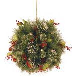 National Tree Company 16-in. Pre-Lit Artificial Wintry Pine Kissing Ball Wall Decor