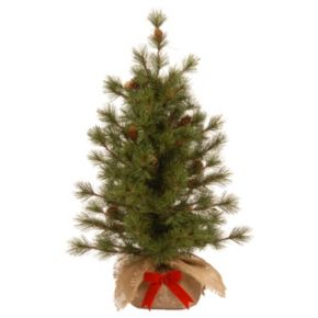 National Tree Company 3 ft. Artificial Bristle Cone Pine Christmas Tree