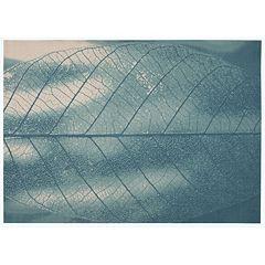 Nourison Coastal Petal Indoor Outdoor Rug