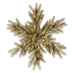 National Tree Company 32-in. Pre-Lit Artificial Dunhill Fir Snowflake Wall Decor