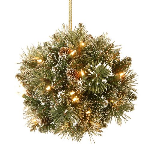 National Tree Company Pre-Lit Artificial Pine Glitter Kissing Ball Wall Decor