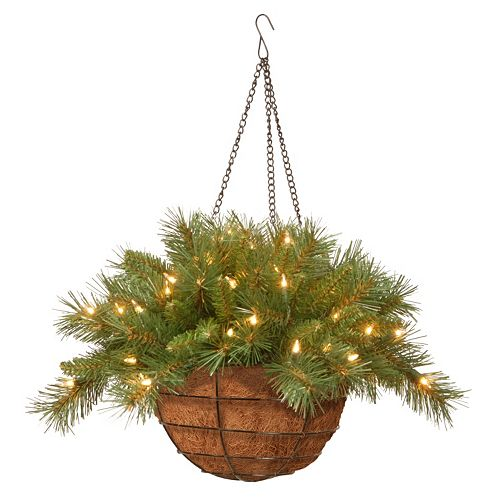 National Tree Company 20-in. Pre-Lit Artificial Tiffany Fir Hanging Basket