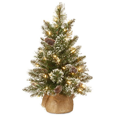 National Tree Company 2-ft. Pre-Lit Artificial Pine Christmas Tree