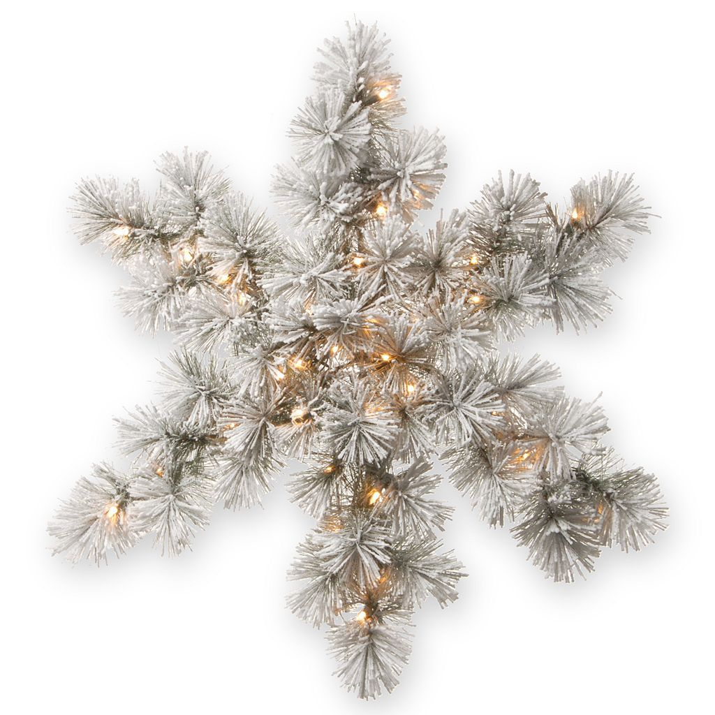 National Tree Company 32-in. Pre-Lit Artificial Snowy Bristle Pine Snowflake Wall Decor