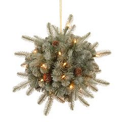 National Tree Company 12-in. Pre-Lit Artificial Frosted Arctic Spruce Kissing Ball Wall Decor