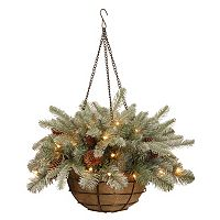 National Tree Company 20 in Pre-Lit Artificial Frosted Arctic Spruce Hanging Basket