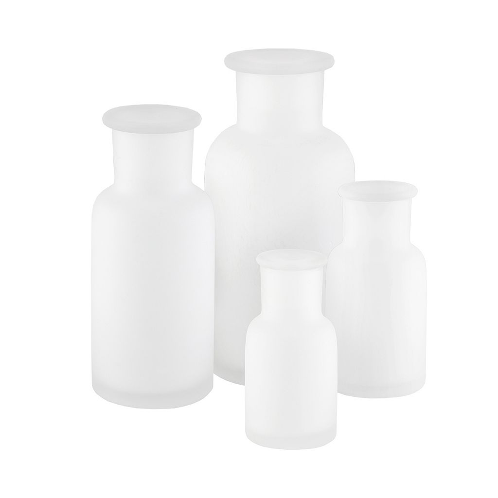 Madison Park Frosted Apothecary 4-piece Jar Set